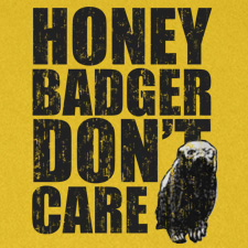 HONEY BADGER DON'T CARE (BW)